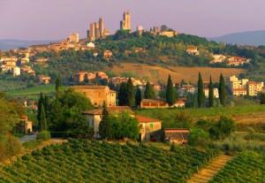 vineyard_in_chianti_tuscany